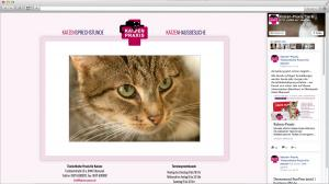 Internetseite für die Katzen Praxis