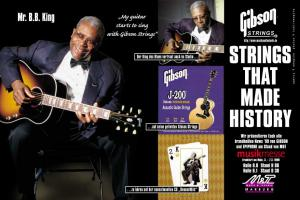 Gibson Strings (Gibson_BB_King_Strings.jpg)